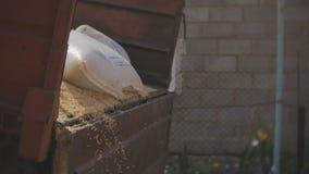 Cargamento del grano del centeno del trigo a la pila del remolque a la hora de la cosecha almacen de video