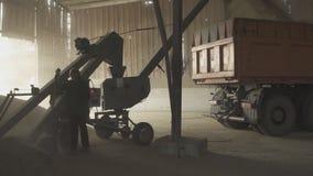 Cargamento del grano del almacenamiento por un transportador a un cuerpo del camión almacen de metraje de vídeo