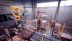 Cargamento robótico del brazo, productos del embalaje Equipo industrial automatizado moderno almacen de video
