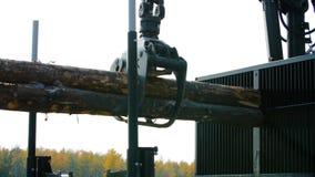 Cargas de máquina da silvicultura um caminhão do log na aterrissagem do local Da floresta da máquina logs para baixo foto de stock royalty free