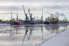 Cargo barges wait for the loading of goods into a major port. ST. PETERSBURG, RUSSIA - FEBRUARY 17, 2016: Cargo barges wait for the loading of goods into a major Royalty Free Stock Photos