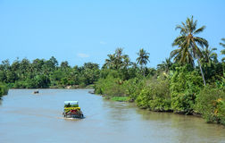 Cargo boats on Mekong river in Mekong Delta, Vietnam Royalty Free Stock Photos