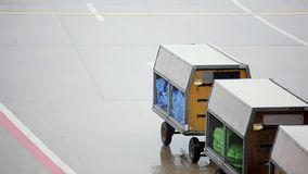 Cargo carts in airport stock footage