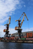 Cargo container cranes in harbor Stock Image