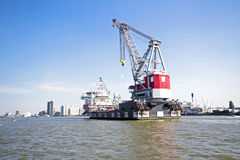 Cargo container in the harbor from Rotterdam Netherlands Royalty Free Stock Photography