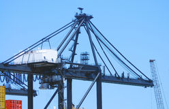 Cargo Crane Royalty Free Stock Images