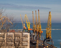 Cargo crane in port Odessa Royalty Free Stock Photography