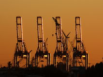 Cargo crane sunset Stock Photography