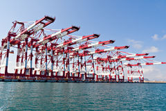 Cargo Cranes. In Industrial Port Royalty Free Stock Photography