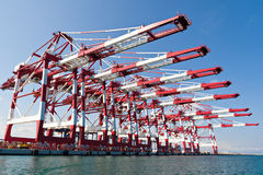 Cargo Cranes. In Industrial Port Stock Image