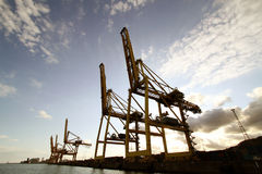 Cargo Cranes Stock Photos