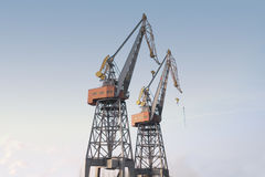 Cargo Cranes. In the harbour of Amsterdam royalty free stock image