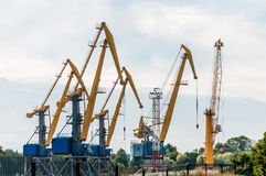 Cargo cranes in the port of Stock Photography