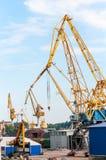 Cargo cranes  port of Royalty Free Stock Photo