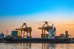 Cargo cranes at the port. Stock Photography