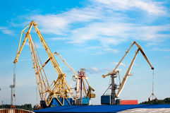 Cargo cranes in the port of Royalty Free Stock Photos