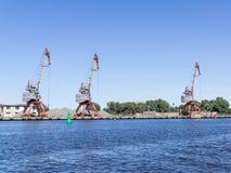 Cargo cranes in port Stock Image