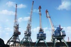 Cargo cranes in the port Royalty Free Stock Photos