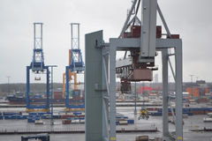 Cargo cranes in the port Royalty Free Stock Photos