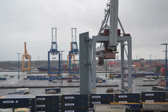 Cargo cranes in the port Stock Photography