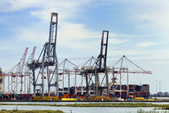 Cargo cranes in a ship yard Royalty Free Stock Photo
