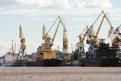 Cargo cranes and ships. In the port royalty free stock photos
