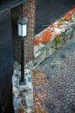 Cargo da lâmpada no savana Fotografia de Stock