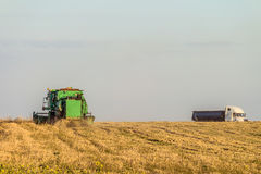 Cargo heavy grain carrier and green harvester working in the field. Agricultural landscape Stock Photography