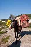 Cargo by horse Stock Photo