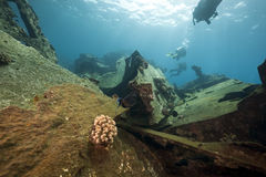 Cargo Kormoran d'épave - a coulé en Tiran 1984 Image libre de droits