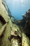 Cargo Kormoran del naufragio - ha affondato in Tiran 1984 Fotografie Stock Libere da Diritti