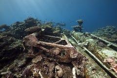 Cargo Kormoran del naufragio - ha affondato in Tiran 1984 Fotografia Stock