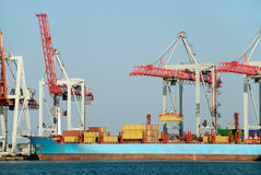 Cargo loading in port. Port, the ships, cargo cranes Stock Images