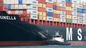 Cargo MSC BRUNELLA arrivant au port d'Oakland photos libres de droits