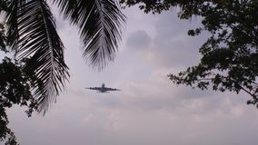 Cargo plano grande de aterrizaje almacen de video