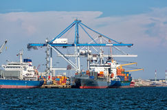 Cargo Sea Port with Cranes Royalty Free Stock Photography