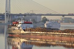 Cargo ship and cable-braced bridge Stock Images