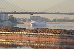 Cargo ship and cable-braced bridge Royalty Free Stock Photo