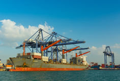 Cargo ship container at port terminal. Royalty Free Stock Image