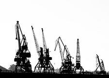 Cargo ship-lifting cranes on the river  in the port (black-and-white photo) Stock Images