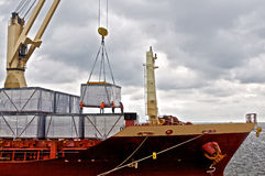 Cargo ship loading in harbor. Crane in ports shipyard, moving cargo in to ship Stock Images