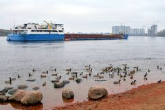 Cargo ship on Neva River. Cargo ship on Neva River on the outskirts of St. Petersburg at cloud day, Russia Royalty Free Stock Photos
