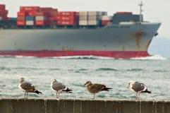 Cargo ship passing San Francisco pier Royalty Free Stock Image