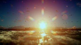 Cargo ship sailing, sunset time lapse clouds and seagulls, sound included. Hd video stock footage