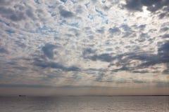 Cargo ship on the sea horizon in the morning sun Royalty Free Stock Image