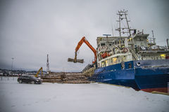 Cargo ship unloading timber Stock Images