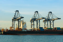 Cargo shipping industry of economy growing. Royalty Free Stock Images