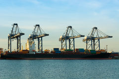 Cargo shipping industry of economy growing. Royalty Free Stock Photos