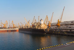 Cargo ships unloading at the port terminal Royalty Free Stock Photos
