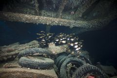 Cargo of the SS Thistlegorm. Stock Photography